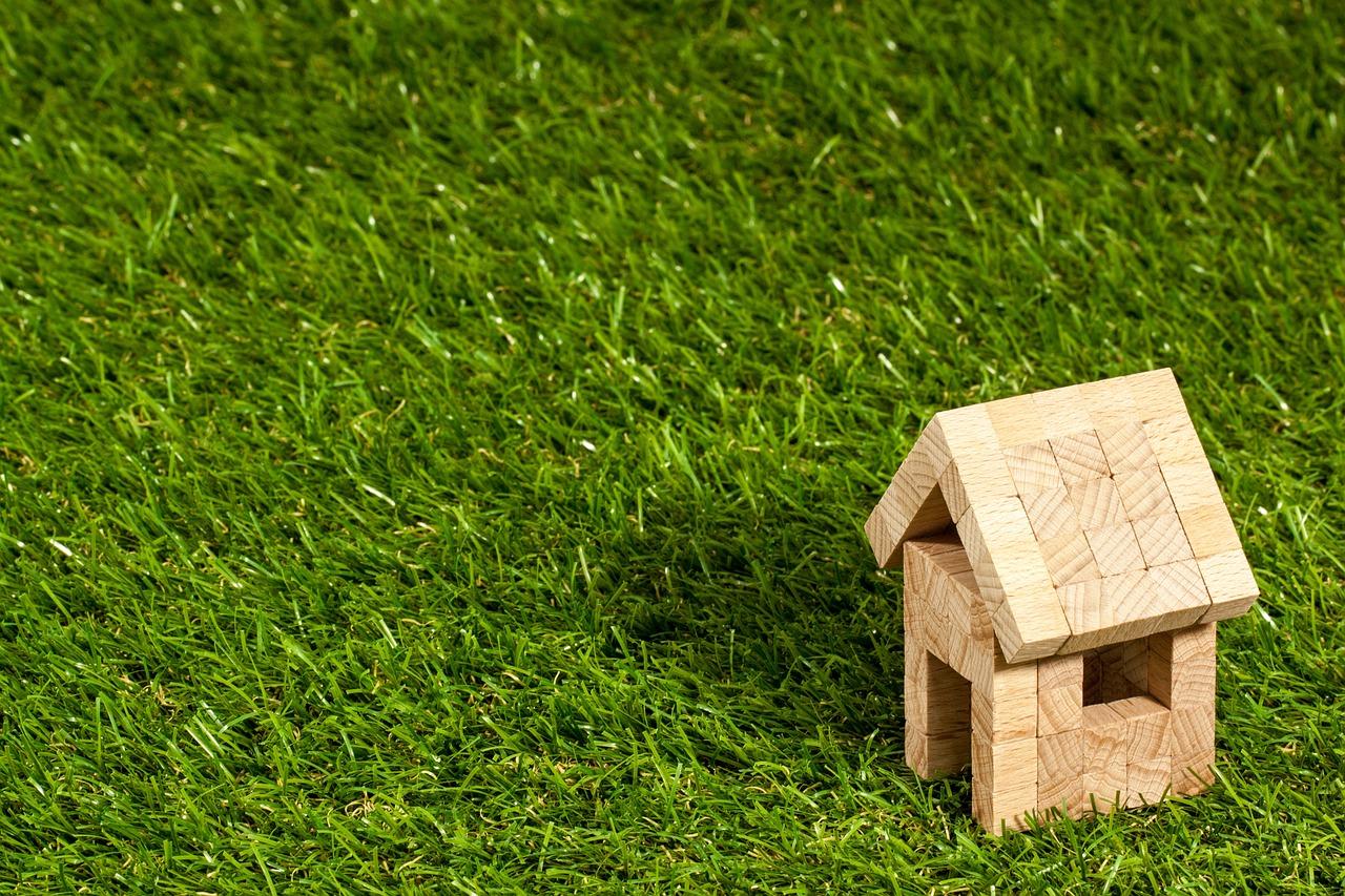 Maison en bois, comment éviter les termites ?